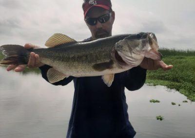 one-largemouth-bass
