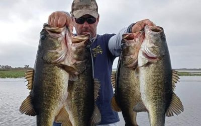 Soft Plastic baits and rigging