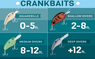 Crankbaits the difference between